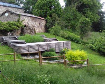 Jardin d'Assainissement Aquatiris 49