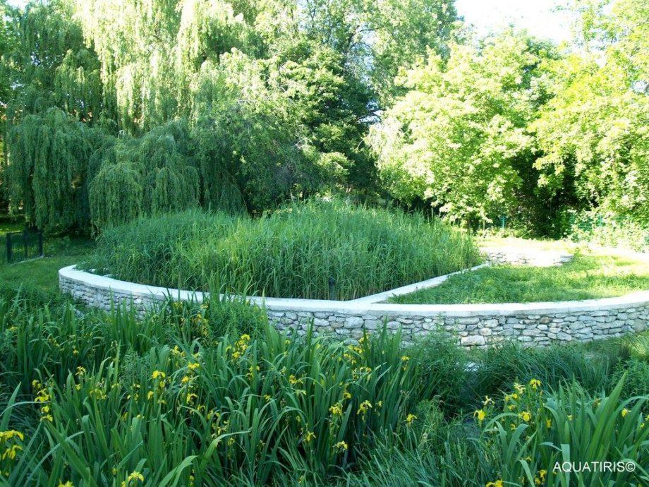 Aquatiris Jardin d'assainissement ovale