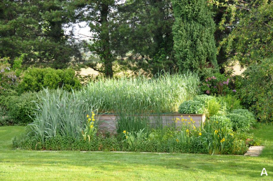 Jardin d'Assainissement gamme iris 1