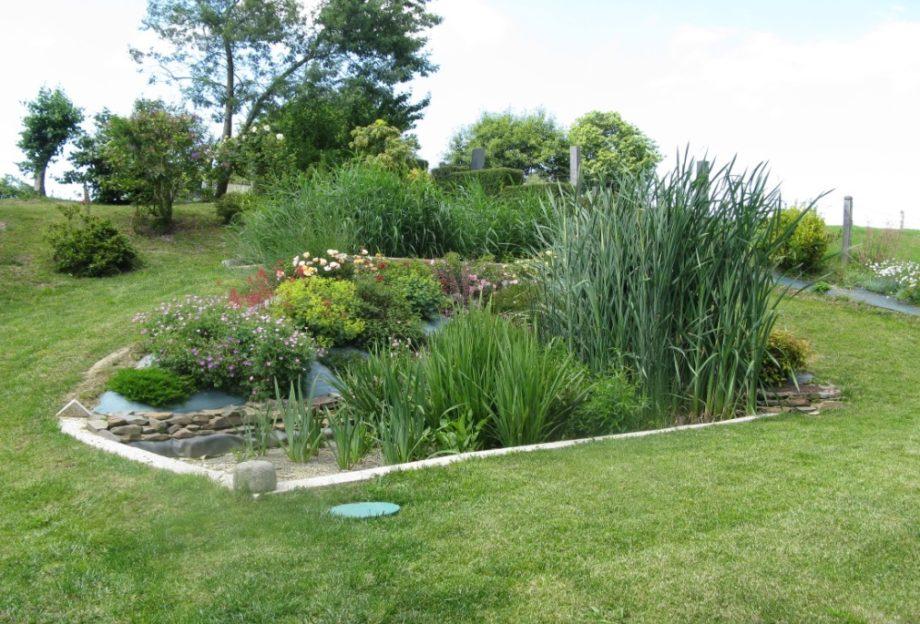 Jardin d'Assainissement Aquatiris 24