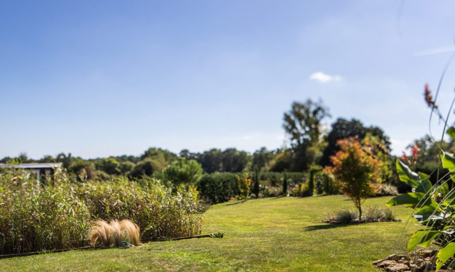 Jardin d'Assainissement Aquatiris - Gamme Roseaux 16