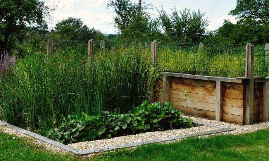 Jardin d'Assainissement Aquatiris - Gamme Iris 31