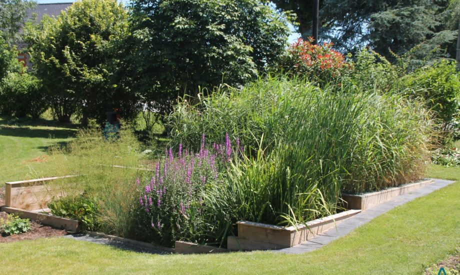 Jardin d'Assainissement Aquatiris - Gamme Iris 28