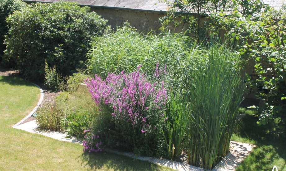Jardin d'Assainissement Aquatiris - Gamme Iris 22