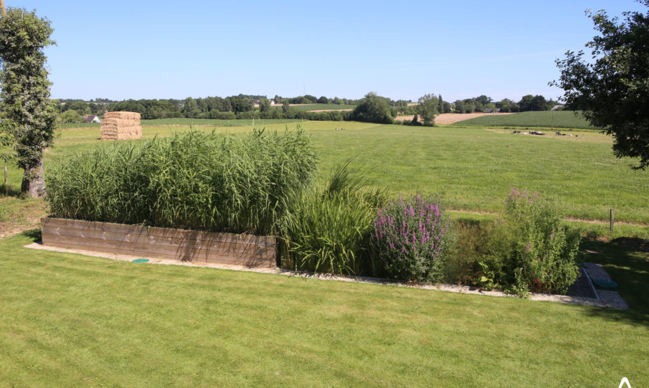 Jardin d'Assainissement Aquatiris - Gamme Iris 16