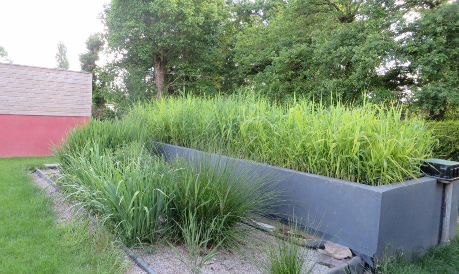 Jardin d'Assainissement Aquatiris - Gamme Iris 14