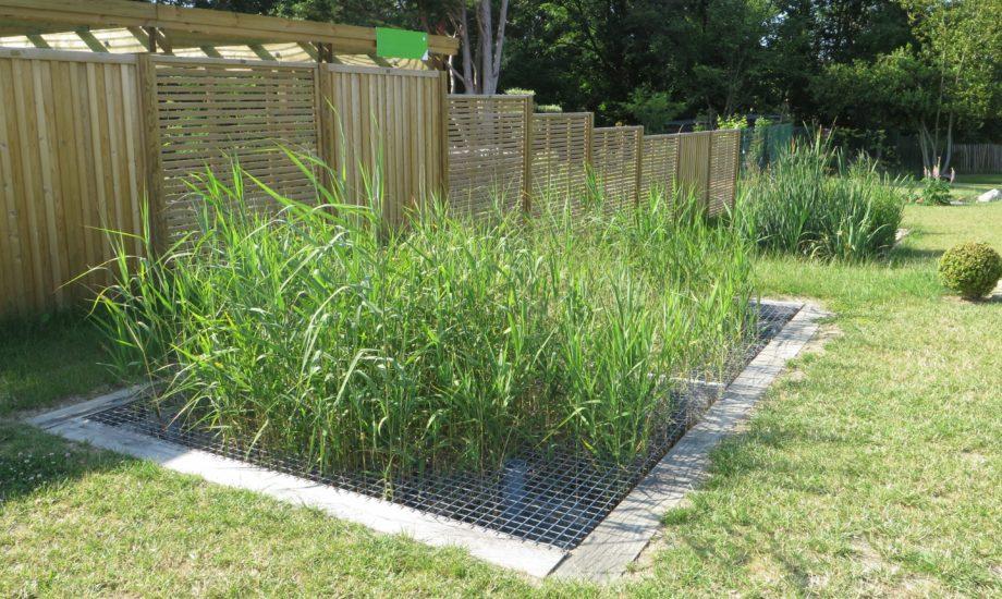 Jardin d'Assainissement Aquatiris - Gamme Iris 11