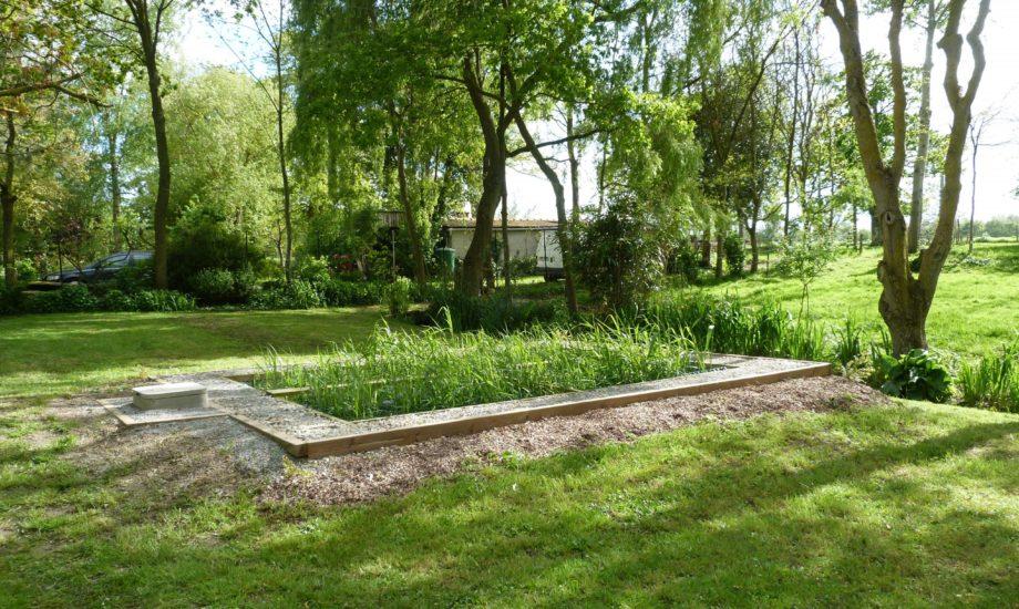 Jardin d'Assainissement Aquatiris - Gamme Roseaux 3