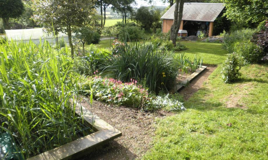 Jardin d'Assainissement Aquatiris - Gamme Iris