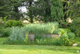 Jardin d'Assainissement Aquatiris - Gamme Iris 6