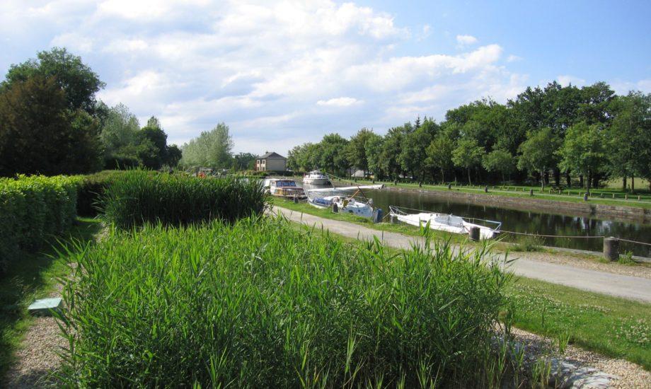 Jardin d'Assainissement Aquatiris - Gamme Roseaux