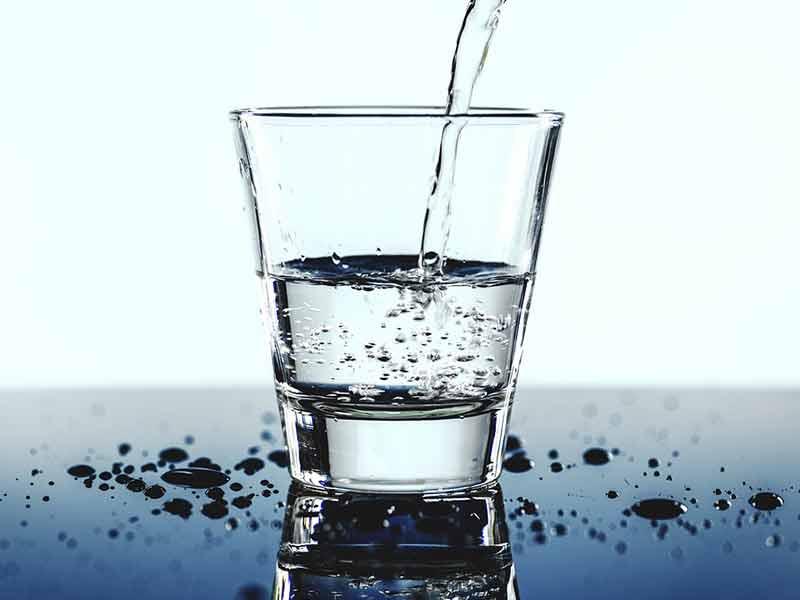 Phytoépuration boire l'eau