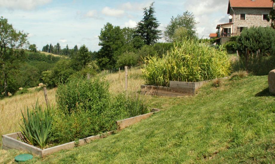Jardin d'Assainissement Aquatiris - Gamme Iris 5