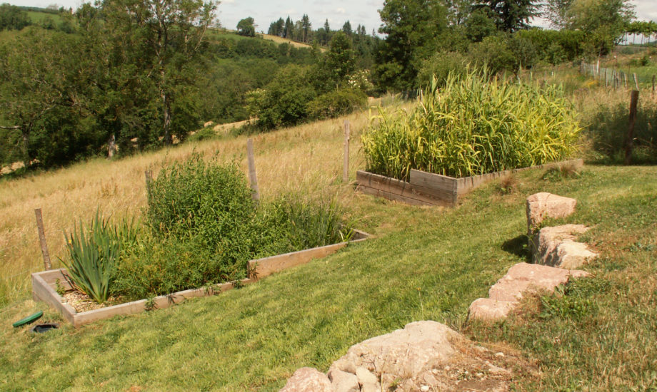 Jardin d'Assainissement Aquatiris - Gamme Iris 4