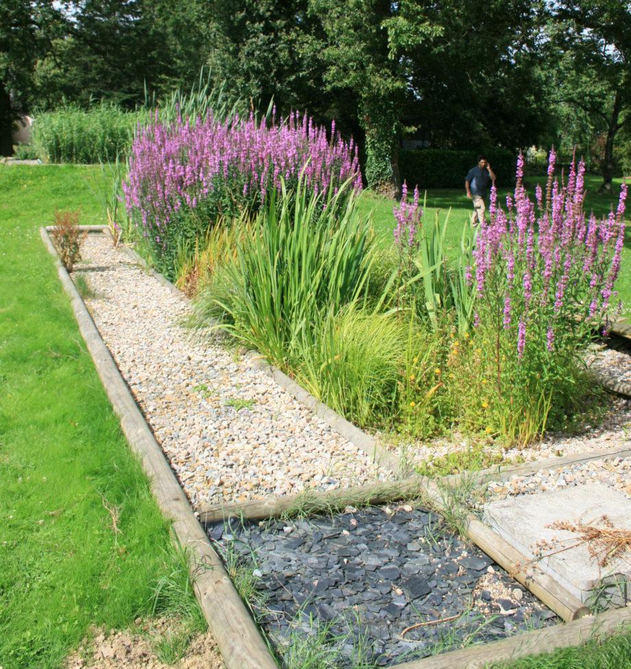 Jardin d'Assainissement Aquatiris - Gamme Iris 3