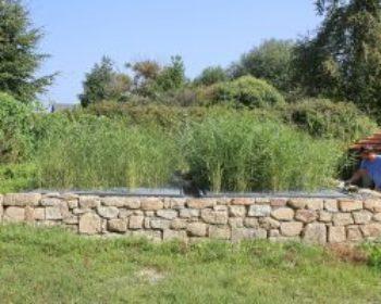 Sanitation Garden 18