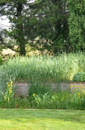 Sanitation Garden 6